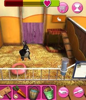 Tierheim Spiele Kostenlos