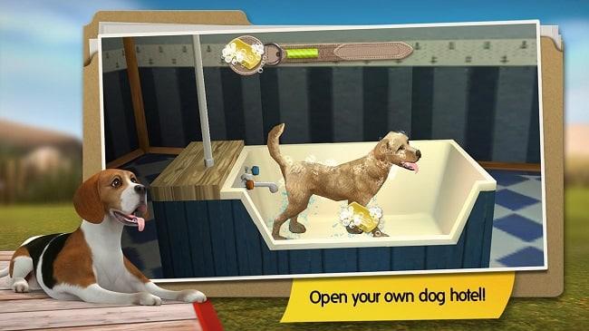 DogHotel