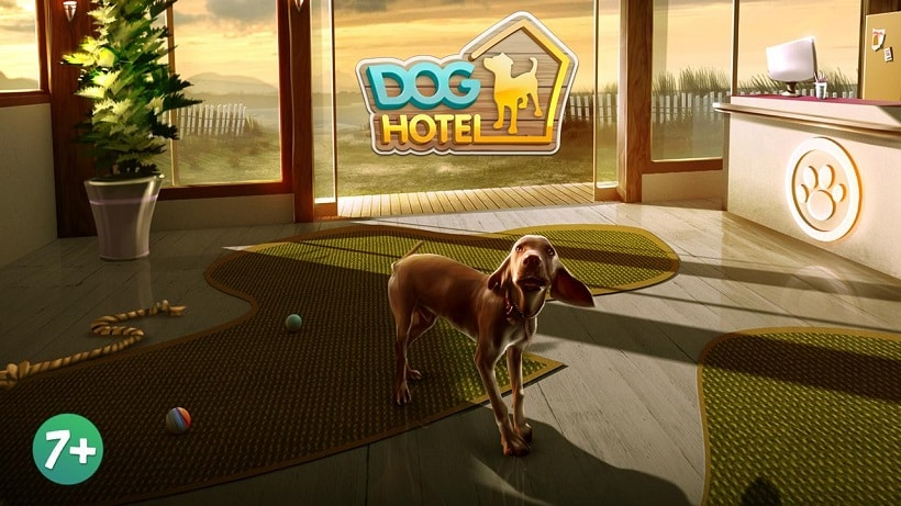 Doghotel Meine Hundepension Ist Ideal Fur Hundeliebhaber