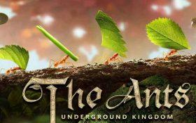 Kostenlose Spiele-Apps - das sind Bilder zum Spiel The Ants