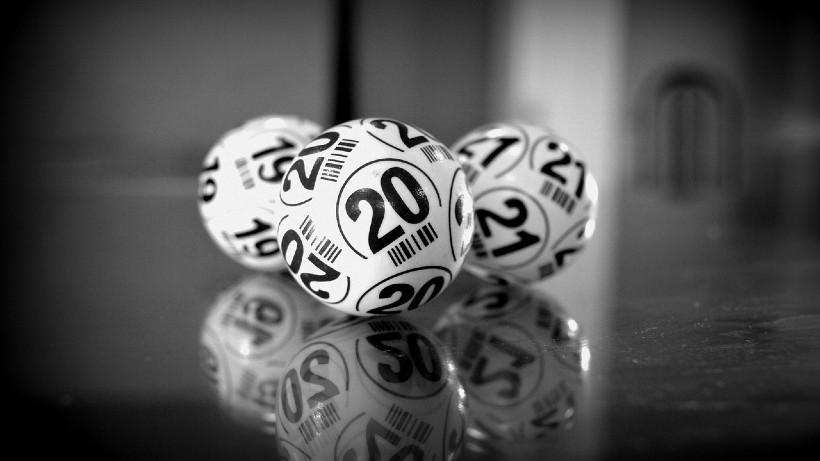 Bingo zuhause spielen